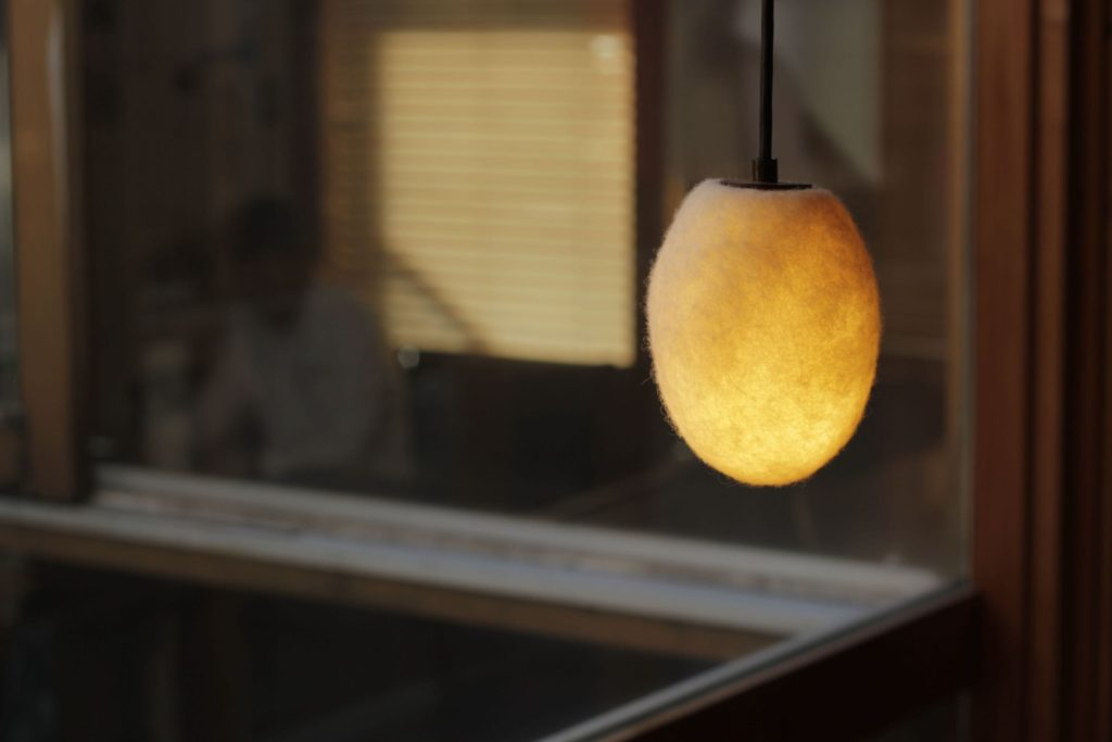 Ovis Lamp2