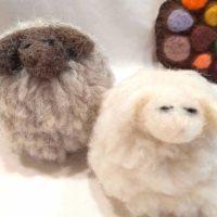 Little Wool 3